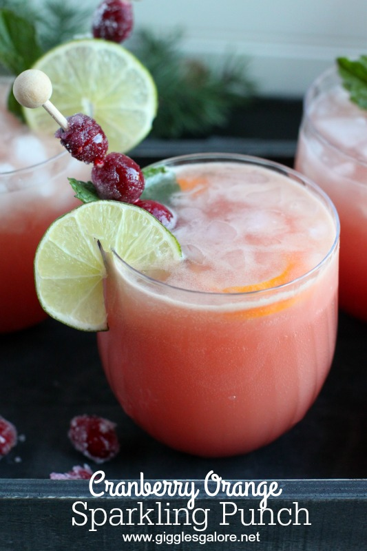 Cranberry Orange Sparkling Punch_Giggles Galore