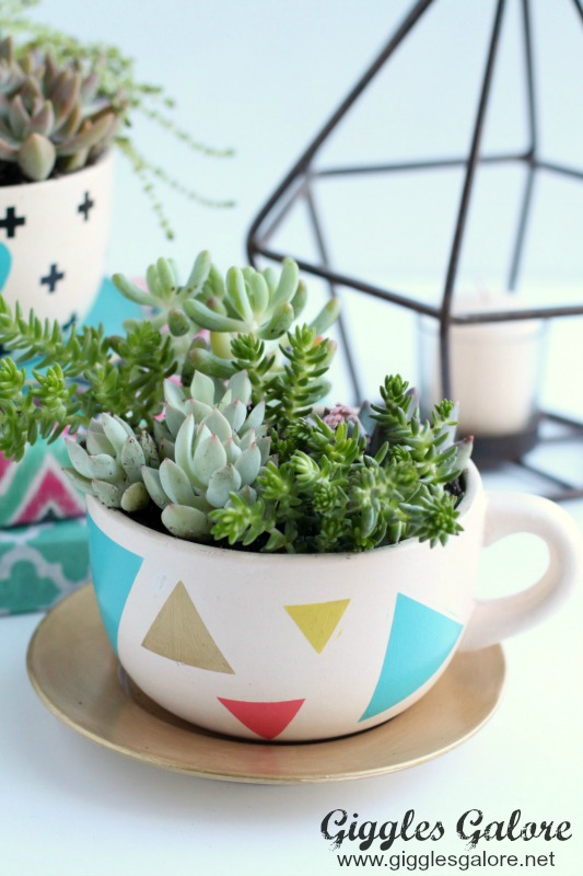 Modern DIY Succulent Tea Cup Planter_Giggles Galore