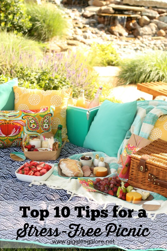 Top 10 Tips for a Stress-Free Picnic_Giggles Galore