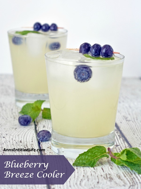 blueberry-breeze-cooler-recipe-01