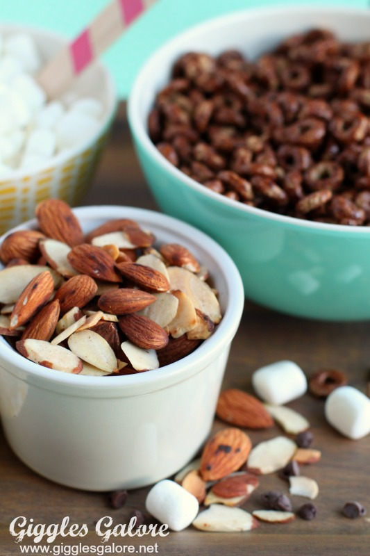 Rocky Road Trail Mix Toasted Almonds