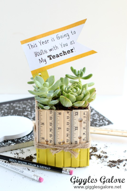 Succulent Ruler Planter Teacher Gift