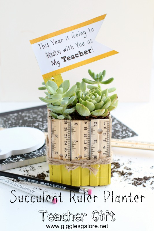 Succulent Ruler Planter Teacher Gift_GG