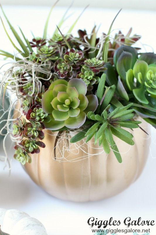 DIY Gold Succulent Pumpkin Planter