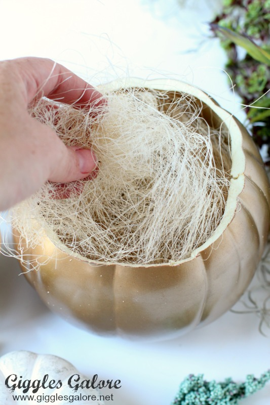 DIY Succulent Pumpkin Planter Natural Filler
