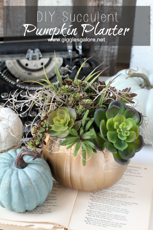 DIY Succulent Pumpkin Planter_Giggles Galore