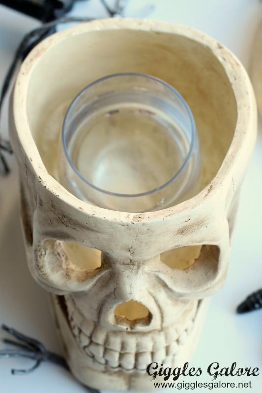 Paper Pulp Skull with Glass Container