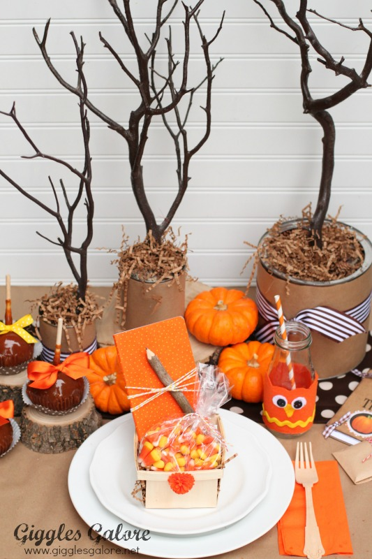 Owl Kids' Thanksgiving Table, Kids Thanksgiving Table Ideas via Giggles Galore