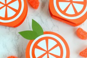 Citrus Orange Favor Boxes