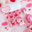 Won't ZOO Be Mine Valentines