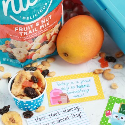 Free Owl Lunchbox Notes and School Snack Ideas