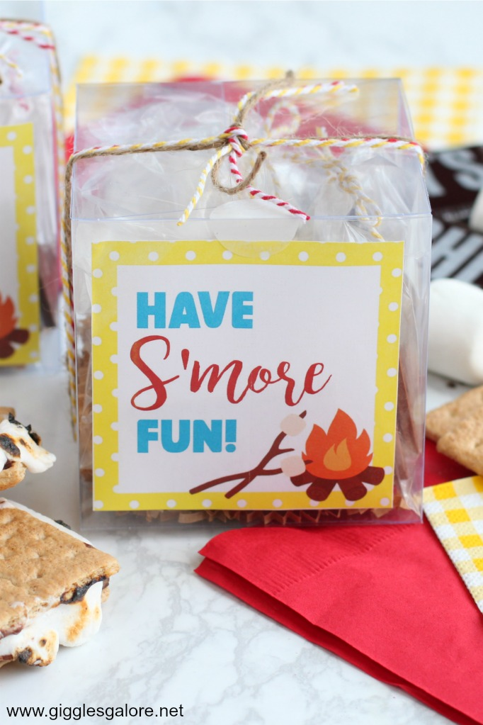 DIY S'mores Party Favor Kits with Free Printables