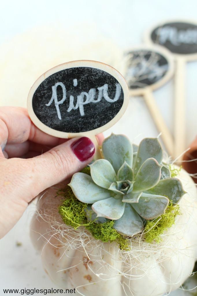 Mini DIY Succulent Pumpkin Place Card Step 7