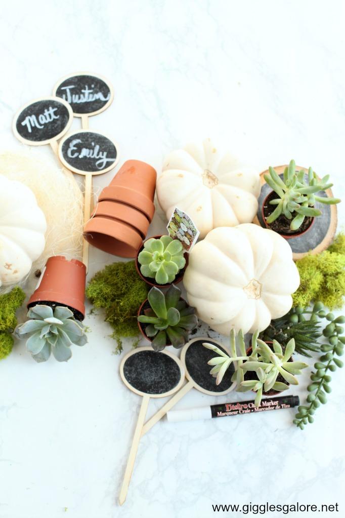 Mini Succulent Pumpkin Place Card Supplies
