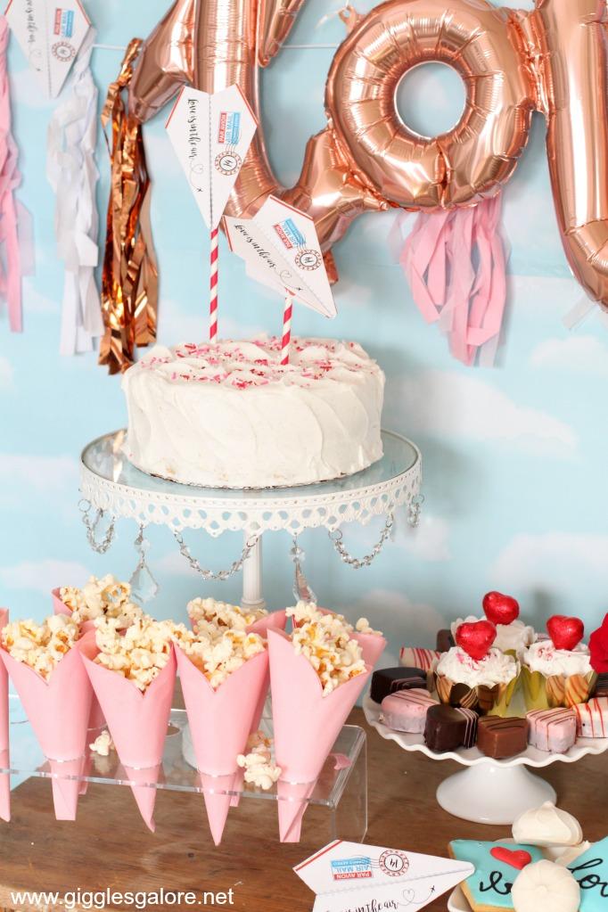 Bridal shower airplane cake