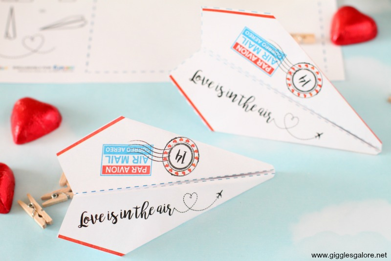 Love is in the air valentine paper airplane