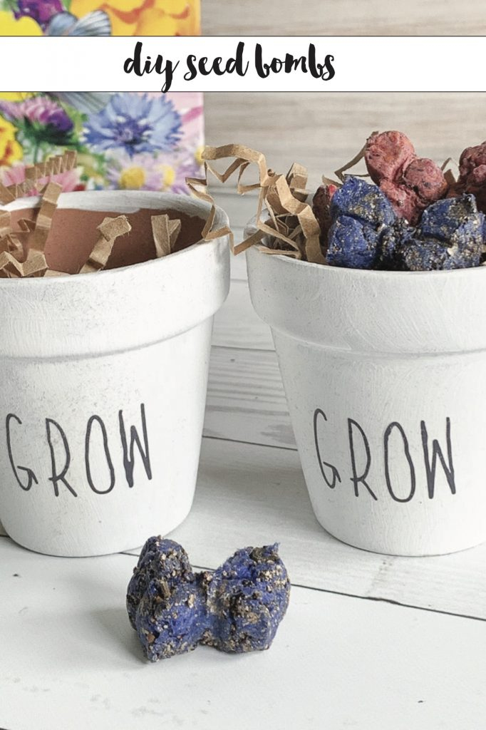 Everyday party magazine diy seed bombs copy