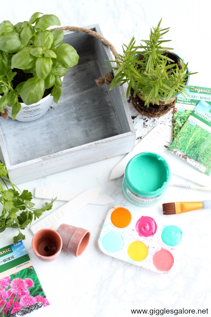 Colorful herb garden supplies