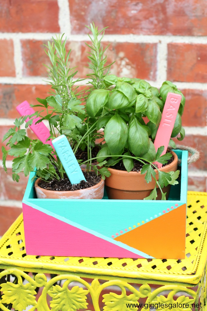 Colorful outdoor herb garden planter