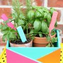 Colorful painted herb garden planter box