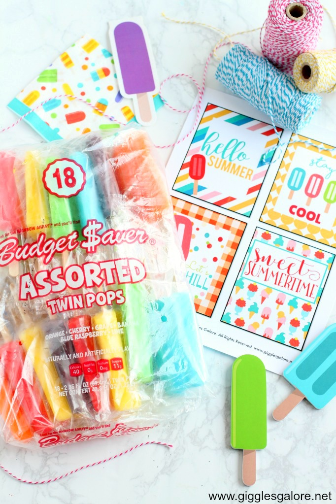 Budget saver twin pops summer gift idea giggles galore