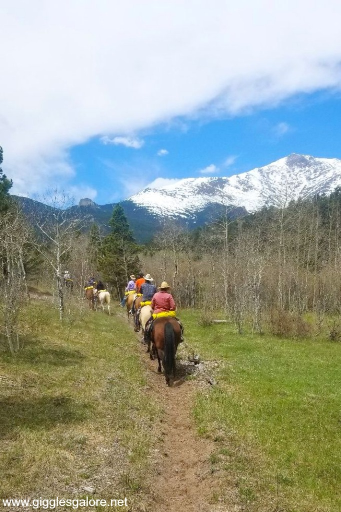 Colorado horseback riding adventure