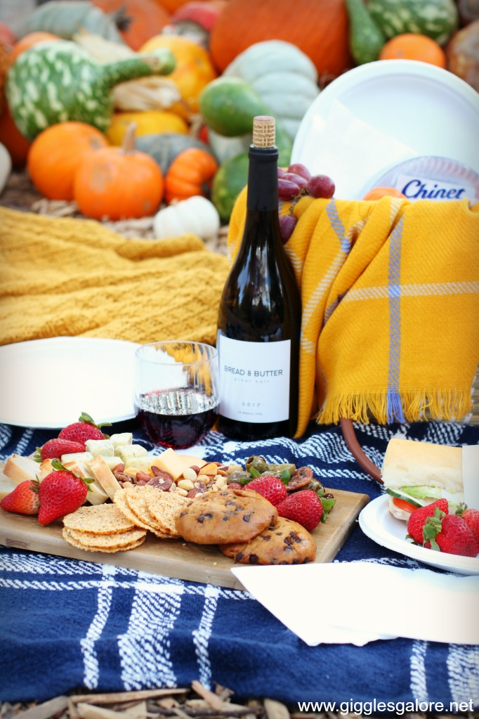 Fall picnic with wine