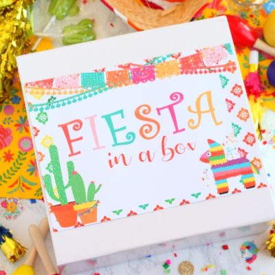 Fiesta in a Box Gift Idea