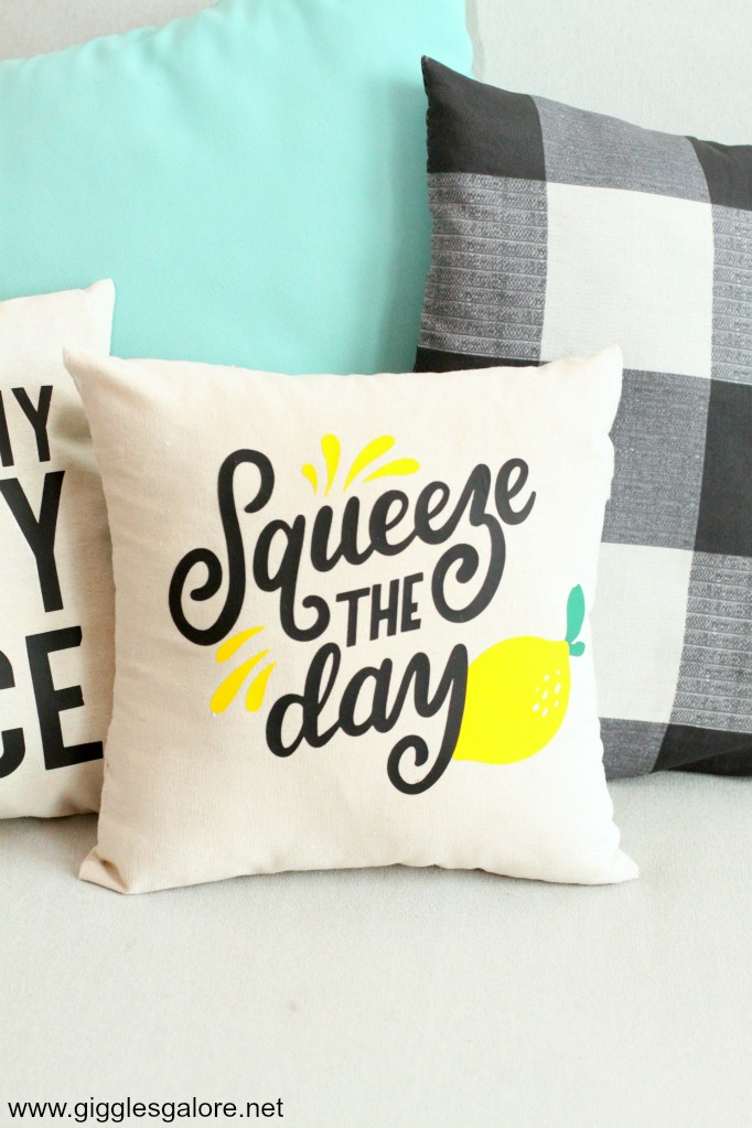 Squeeze the day diy pillow