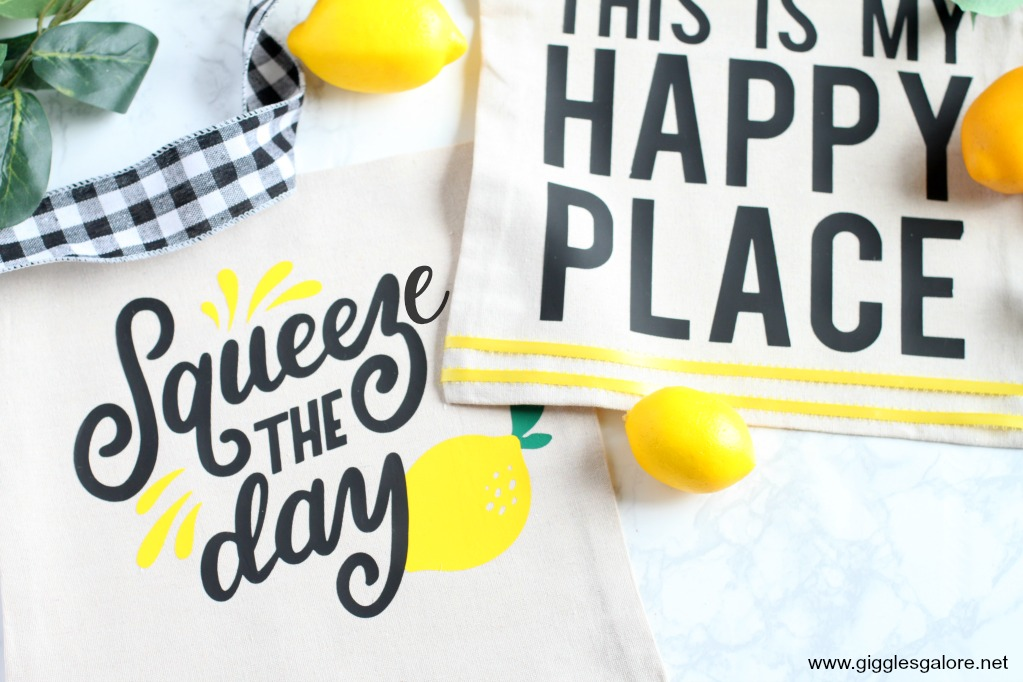 Squeeze the day pillow with cricut