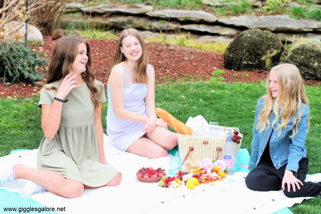 Picnic ideas with friends