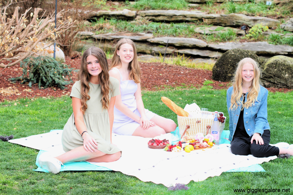 Picnic with girlfriends party ideas