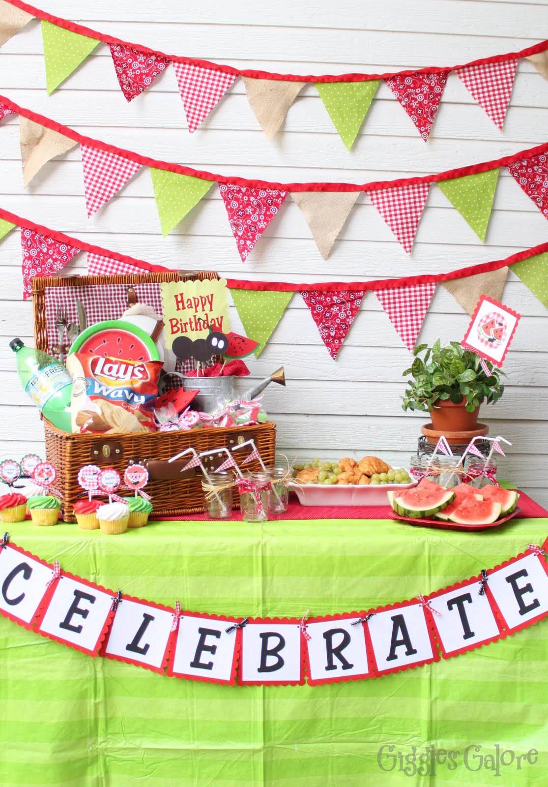 Image result for watermelon parties