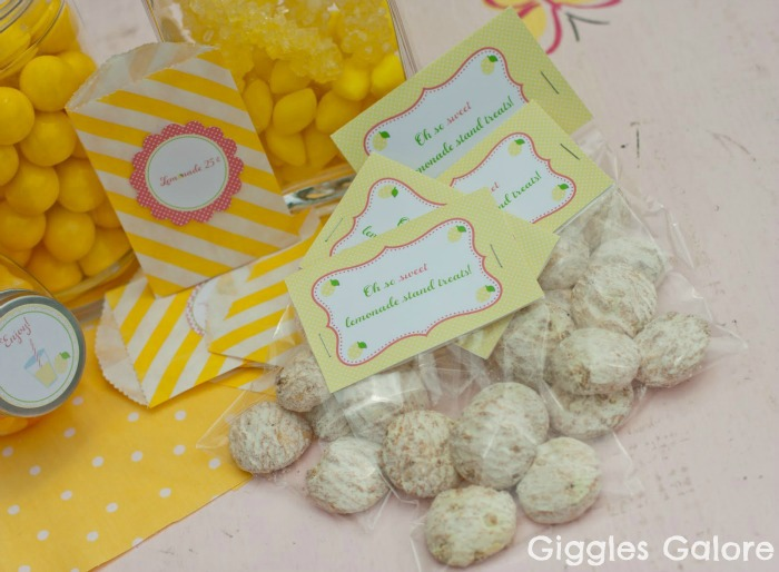 Lemonade Stand Party with DIY Lemonade Stand Kits - Giggles