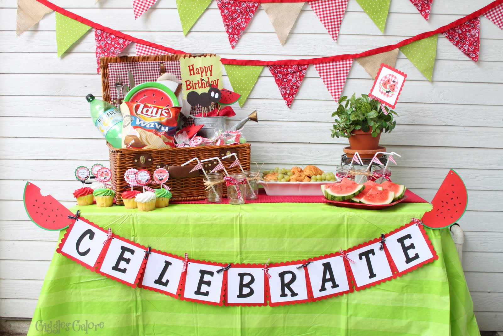 Watermelon picnic party for 80th birthday party decoration